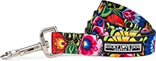 Lucky Love Dog | Multi-Color Dog Leash for Small Medium Large Dogs - Soft, Adjustable, Cute Pet Gear for Male and Female Dogs
