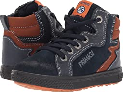 Primigi Kids - PBZ 8549 (Toddler)