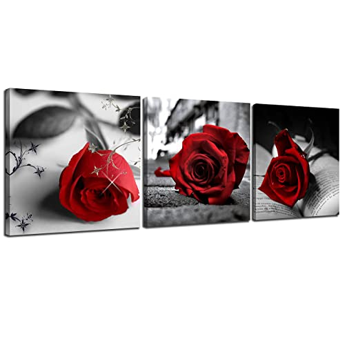 Black And White And Red Home Decor Amazon Com