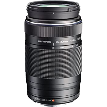 Olympus M.Zuiko Digital ED 75-300mm f/4.8-6.7 II: Amazon.es ...