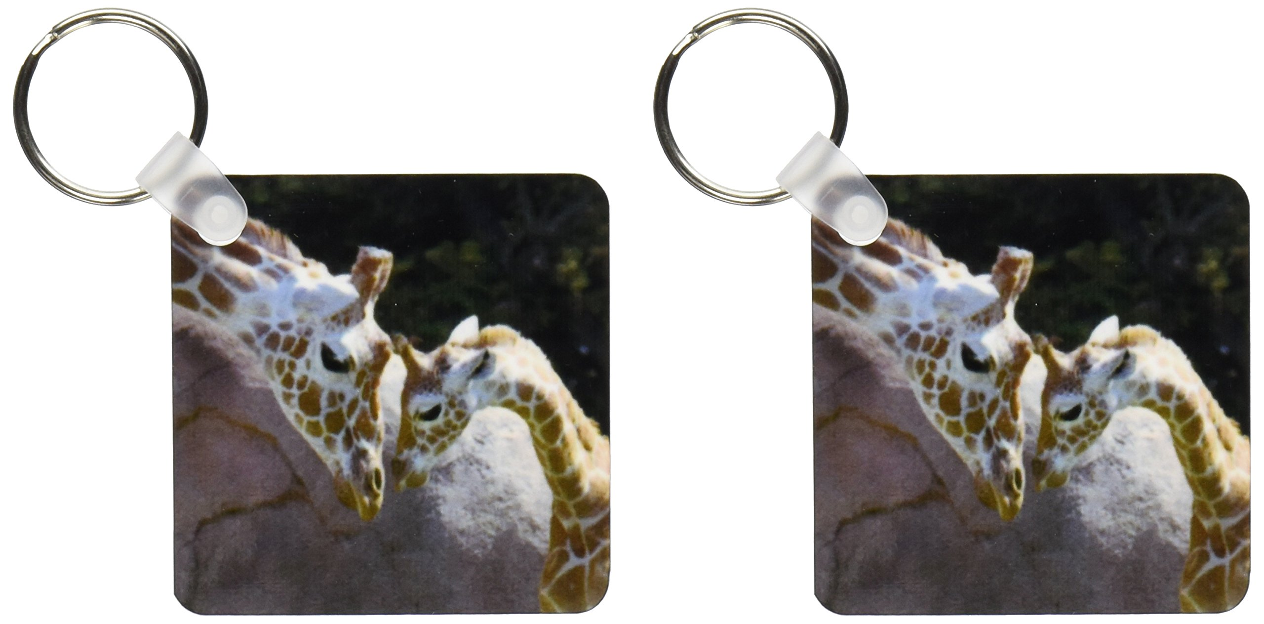 kc_96857 Danita Delimont - Giraffes - Mother and baby giraffe, San Francisco Zoo - US48 TAU0001 - Tananarive Aubert - Key Chains
