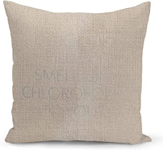 Sleepy Funny Quote Beige Linen Pillow with Metalic Silver Foil Print Does this pillow smell Sofa Pillow