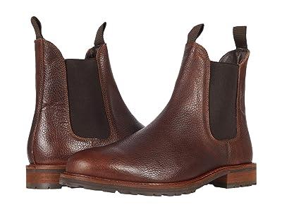 Shoe The Bear York L (Brown) Men