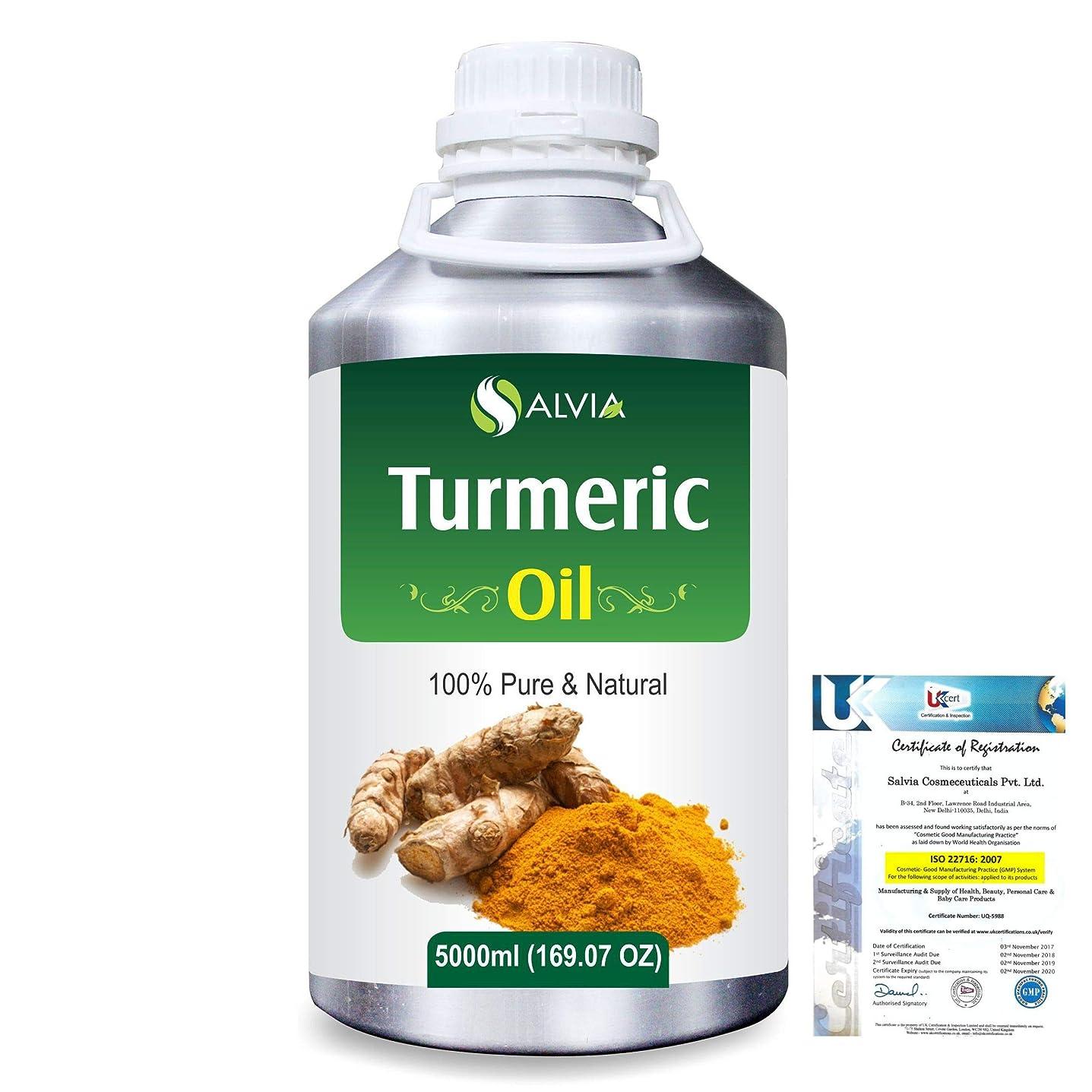やさしくブリーフケース努力するTurmeric (Curcuma Longa) 100% Pure Natural Essential Oil 5000ml/169 fl.oz.