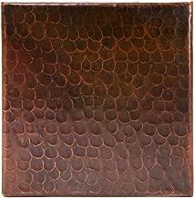 Best premier copper products vbt20db Reviews