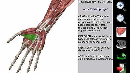 『Visual Muscles 3D』の11枚目の画像