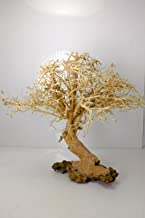 aquarium bonsai driftwood