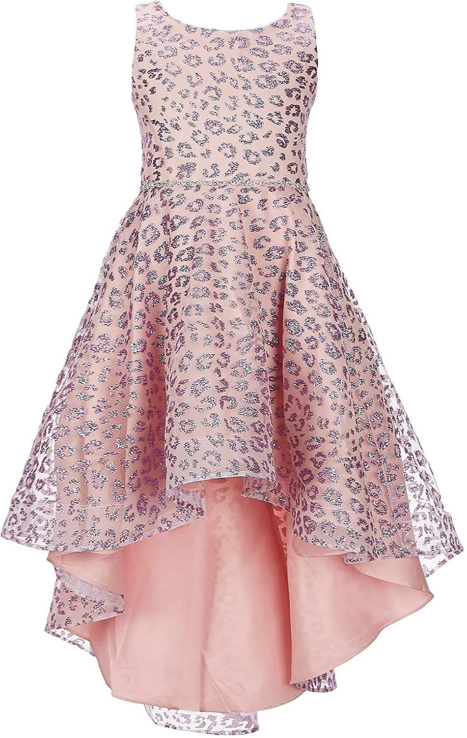 Rare Editions Girls Size 2T-6X Lilac Pink Leopard Glitter Special Occasion Dress
