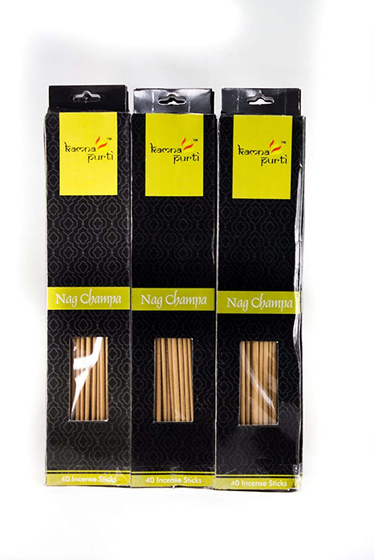 王女司教デコードするSBF Crafts 12セットIncense Sticks ( 40?Sticks /各) Nag Champa Highly Fragrance Incense Infused with Essential Oilsパーティ用理想的、Spa & Aroma Therapy。