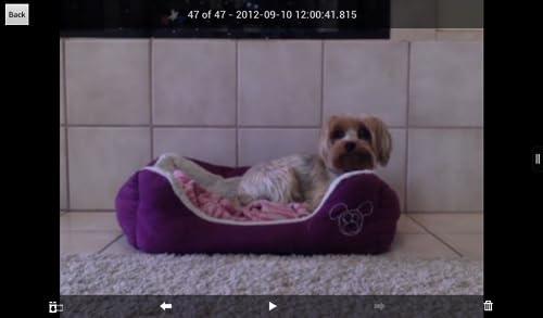 『iCam - Webcam Video Streaming』の5枚目の画像
