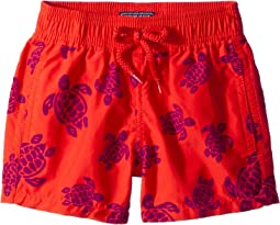 Vilebrequin Kids - Tortues Flockées Swim Trunk (Toddler/Little Kids/Big Kids)