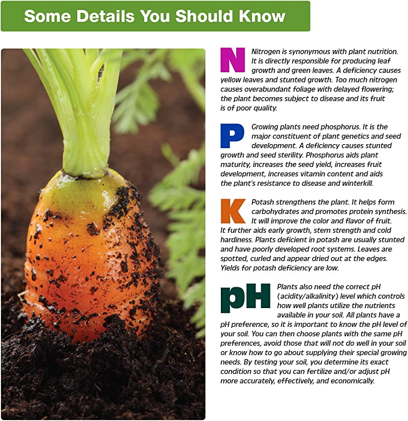 Most Important Things to Test for in Soil