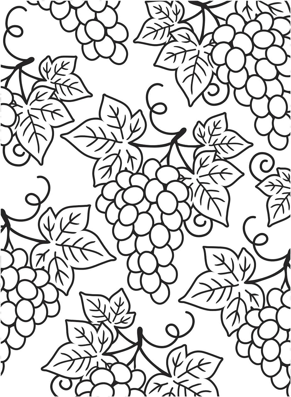 Darice Embossing Folder Grape 55% SALENEW very popular! OFF Clusters