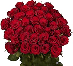 GlobalRose 50 Red Roses - Beautiful Fresh Cut Flowers- Lovely Natural Blooms