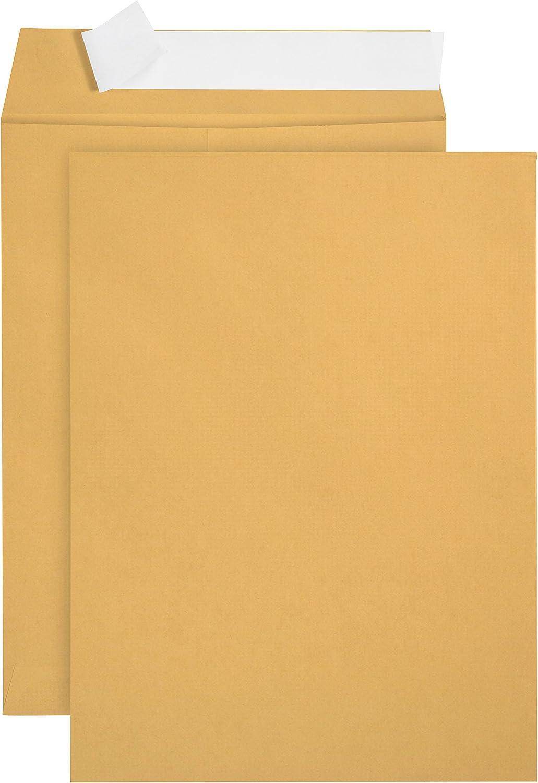 100 6 x 9 Self Seal Golden Kraft Overs Brown - Catalog Popular product Envelopes Max 87% OFF