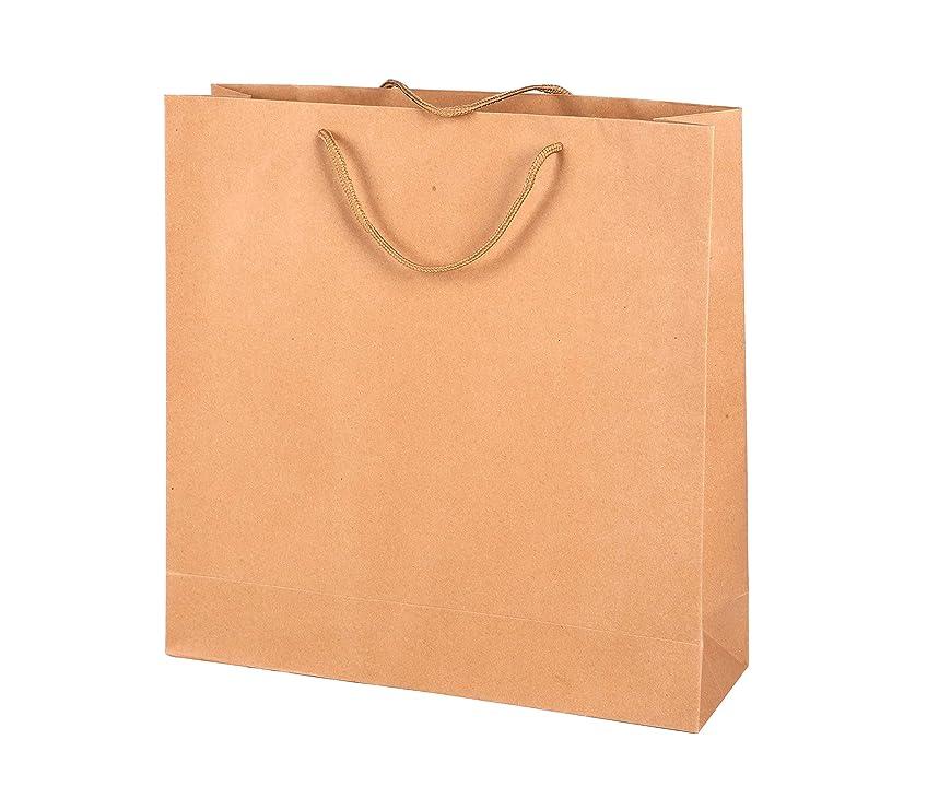 Brown Kraft Paper Bags with Handles,9.84