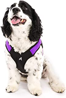 Gooby - Escape Free Easy Fit Harness, Small Dog Step-in Harness for Dogs That Like to Escape Their Harness