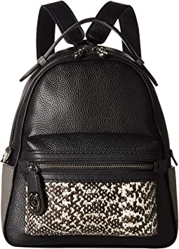 Color Block Exotic Campus Backpack 23