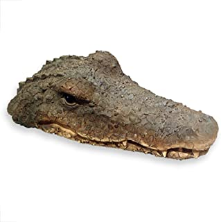 WHW Whole House Worlds Floating Crocodile Head, Garden Art or Decoy for Water, Pools and Ponds, 1 ft 5/8 Inch Long (32cm)