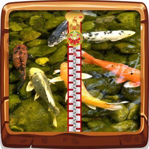 Koi Fisch-Zipper Lock Screen