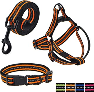 Mile High Life Night Reflective Double Adjustable Band Nylon Small Puppy Pet Dog Combo Collar Leash and Harness Set (Orang...