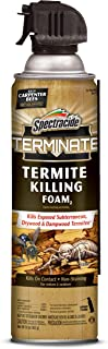 organic termite treatment
