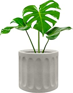 Sponsored Ad - Modern Ceramic Pots for Plants - This 6 Inch Plant Pot is Great as a Flower Pot, Orchid Pot, Succulent Plan...