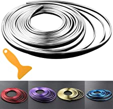 Car Interior Trim Strips - 16.4ft Universal Car Gap Fillers Automobile Moulding Line Decorative Accessories DIY Flexible Strip Garnish Accessory with Installing Tool (5M- Silver)
