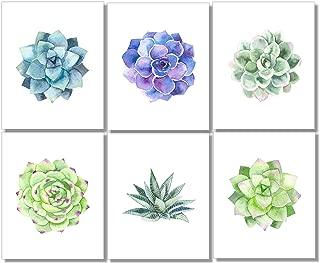 Succulent Wall Art Prints (Set of 6) - 8x10 - Unframed - Botanical Print - Cactus Decor