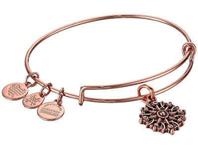 Alex and Ani Path of Symbols-Compass III Bangle (Rose Gold) Bracelet