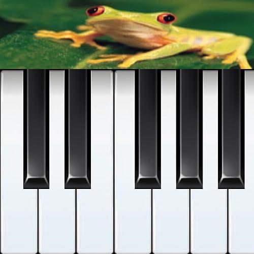 Frog Piano