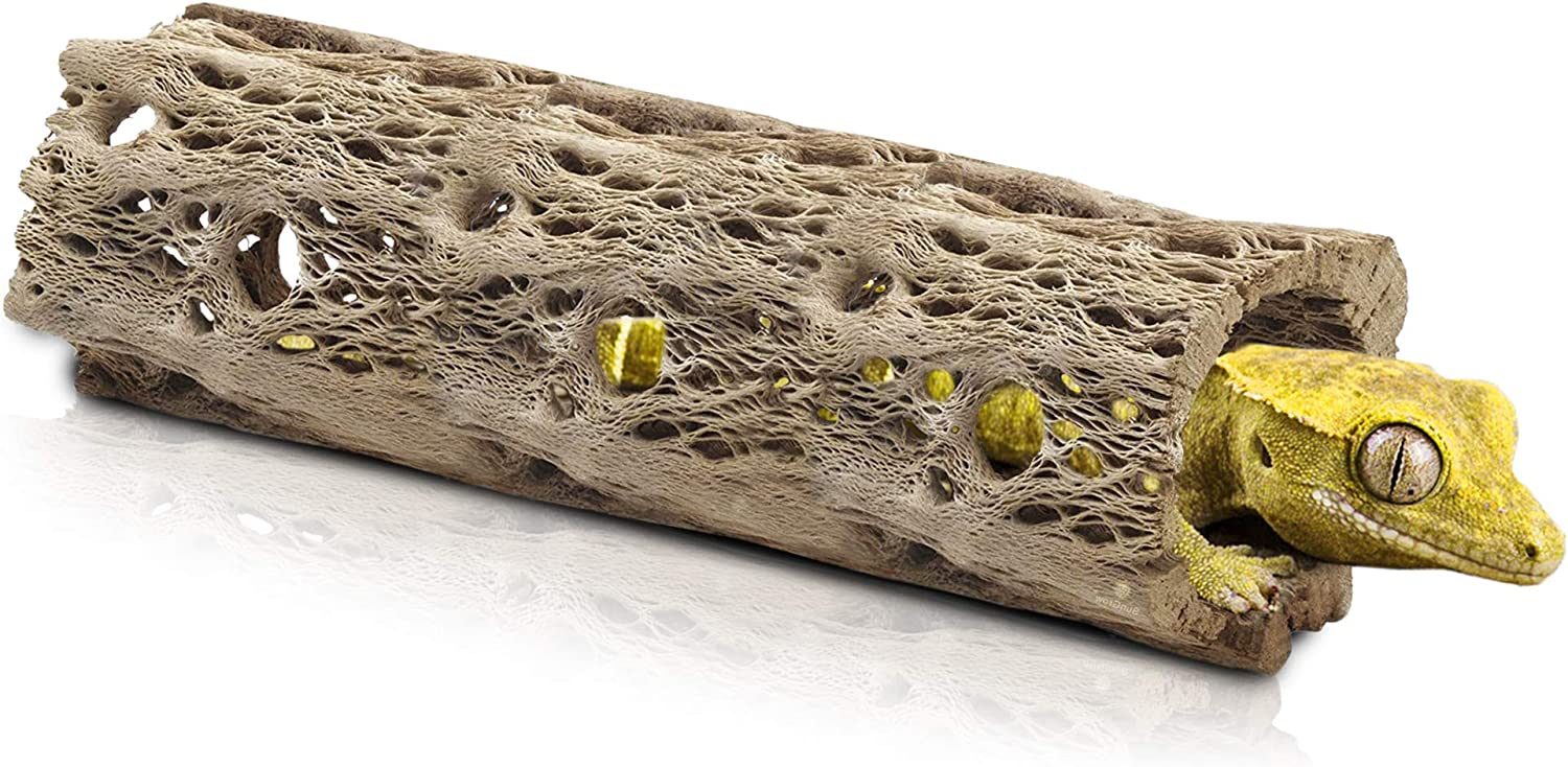 Meric Cholla Cave for Crested Gecko, 6