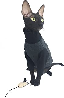 Kotomoda gato Winter Boss