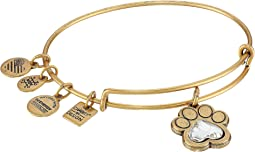Alex and Ani - Charity By Design Prints of Love