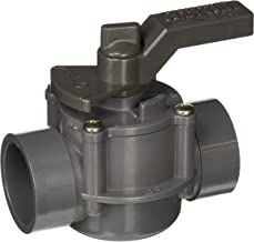 Jandy 3407 Space Saver 2 Port 1-1/2 to 2-Inch Positive Seal Pool/Spa Valve, Gray