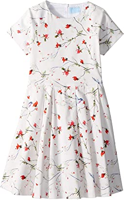 Lanvin Kids Bloom Short Sleeve Dress (Big Kids)