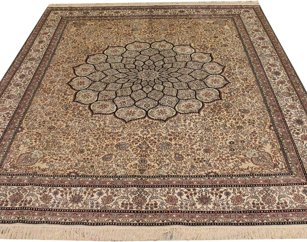 Challenge the lowest price of Japan Very popular! Camel Carpet 8'x10' Area Rug Silk for Handwoven Oriental