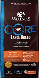 Wellness CORE Natural Grain 26 Pound