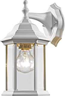 Z-Lite T21WH 1-Light Outdoor Wall Light with White Frame, Clear Beveled