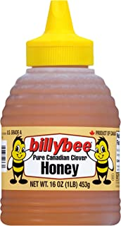 Best billy bee honey bear Reviews