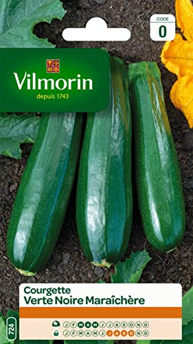 Vilmorin 3484440 Courgette, Vert, 90 x 2 x 160 cm