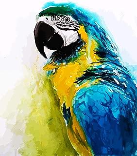 Best bird diamond painting Reviews