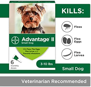 Bayer Advantage II Topical Flea Treatment for Small Dogs, 3-10 lbs