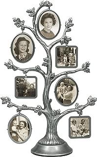 Best sliger family tree Reviews