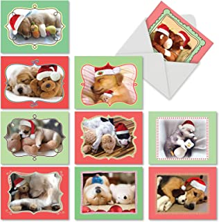 Christmas Cuddle Buddies' Holiday Greeting Cards, Boxed Set of 10 Snuggly Christmas Puppies Holiday Notes 4 x 5.12 inch, Cute Sleepy Pups Christmas Cards, Napping Dogs with Toys Cards M6469XSG