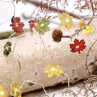 Best leaves string lights Reviews