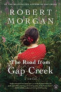 The Road from Gap Creek: A Novel (Shannon Ravenel)