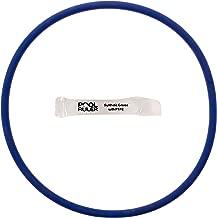 Pool Ruler CLX200K O-Ring (Chlorine Resistant VITON) + LUBRICANT for Hayward CL200 & CL220 Pool Chlorinator Chemical Feeder Lid