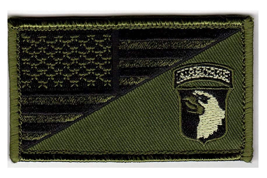 101st Airborne American Flag 2