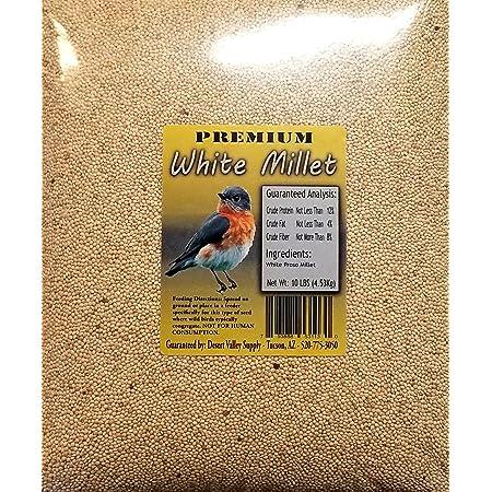 Premium White Millet Proso Seeds - Wild Bird Food- Cardinal - Finch & More (10-Pounds)